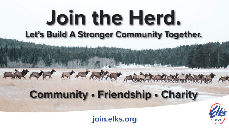 join the herd 1